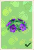 Ausrüstung (New Horizons) - Animal Crossing Wiki