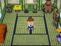 Inneneinrichtung Animal Crossing: Let's Go to the City
